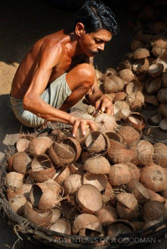 A coconut worker in Kerala, India