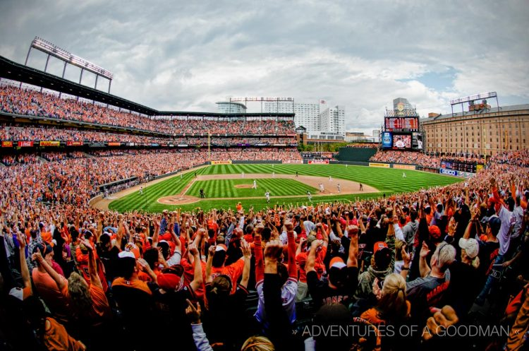 The crowd at Camden Yards goes crazy cheering after the last out of the 2012 regular season home game