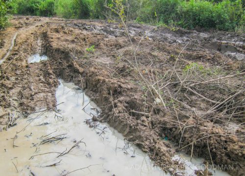 Mud and monsoon rain fill the tire tracks on the road to Kampong Phluk, Cambodia