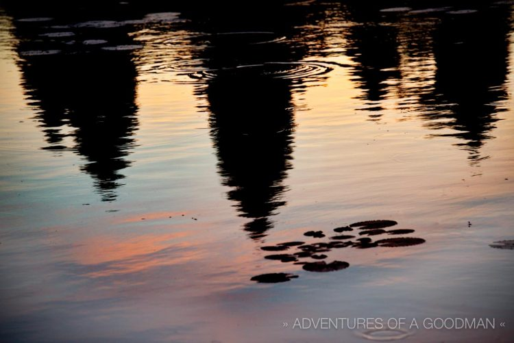 The lotus pond is a great place to catch a sunrise reflection of Angkor Wat.