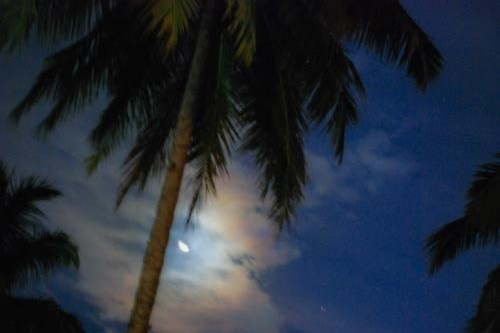 Night time on Havelock Island