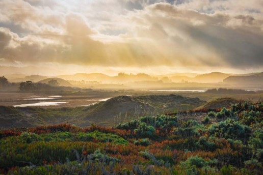 Sunshine after a thunderstorm in Pescadero, CA
