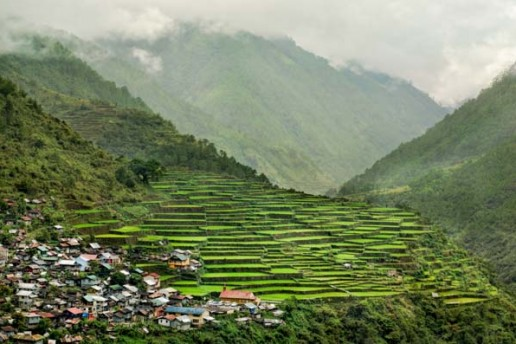 The Bay-Yo Rice Terraces in Bontoc, Mountain Province, Cordilleras, Philippines