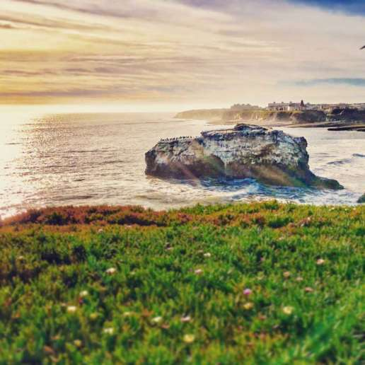 Natural Bridges State Park in Santa Cruz, CA